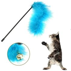 Wish | New Cute Cat Kitten Pet Teaser Turkey Feather Activity Toy Wire Chaser Toys