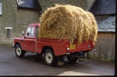 hay there landy