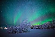 Northern Lights over Harriniva / Torassieppi | Harriniva Hotels & Safaris