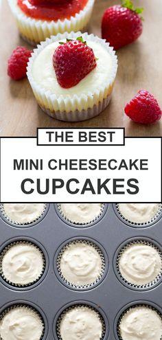 Mini Cheesecake Cupcakes, Mini Cheesecake Recipes, Mini Cheesecakes, Mini Desserts, Christmas Desserts, Christmas Baking, Easy Desserts, Cheescake Bites, Cream Cheese Cupcakes