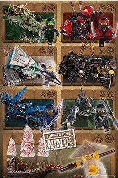 COLE The Lego Ninjago Movie Large Poster Art Print Maxi A0 A1 A2 A3 A4