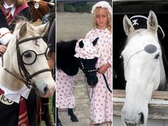 ♥♥♥ HALLOWEEN - 10 Halloween Costume Ideas for Your Horse