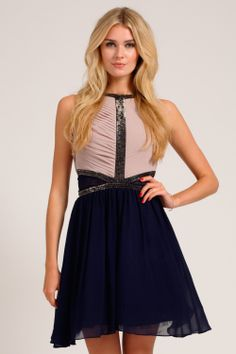 Mink & Navy Pleated Embellished Mesh Insert Fit And Flare Dress