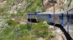 train trip machu picchu - Pesquisa Google