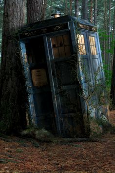 The Forgotten TARDIS.