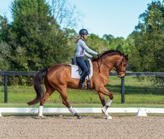 Unlock your horse's dressage potential with this rising international star's key to success.