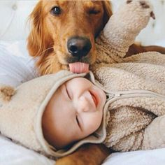 So cute! Golden Retriever pup trying to lick smiling human baby. So Cute Baby, Baby Love, Cute Kids, Adorable Babies, Pretty Baby, Pretty Kids, Beautiful Babies, Cutest Babies Ever, Cute Little Boys