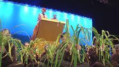 Mankato Community Ed Presents The Lion King Jr. Musical