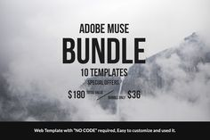 Adobe Muse Bundle - 10 Templates by Rometheme on Creative Market