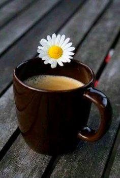 pragmaticamente:  mennyfox55: Café   …  Buongiorno!