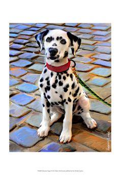 • Artistry International, Inc. • Dalmatian Puppy