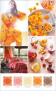 Mood board based on tropical and Indian spice colors papaya, guava, tamarind, saffron, chai