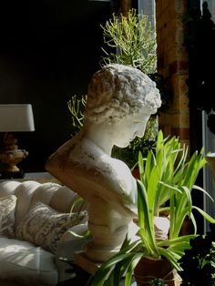 Plaster bust of Antinous with narcissus, Spring 2012