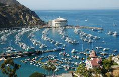 Catalina Island, LA