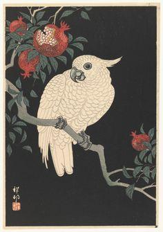 (2) Following | Tumblr Art Et Illustration, Free Illustrations, Japanese Prints, Japanese Art, Vintage Japanese, Art Encadrée, Framed Art Prints, Fine Art Prints, Ohara Koson