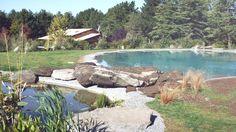 #biodesign #biodesignpools #newpools #poolphotography #pool #swimmingponds #ponds #pools #poolinspiration #outdoor #gardenpool #poolpro #poolsinczechrepublic