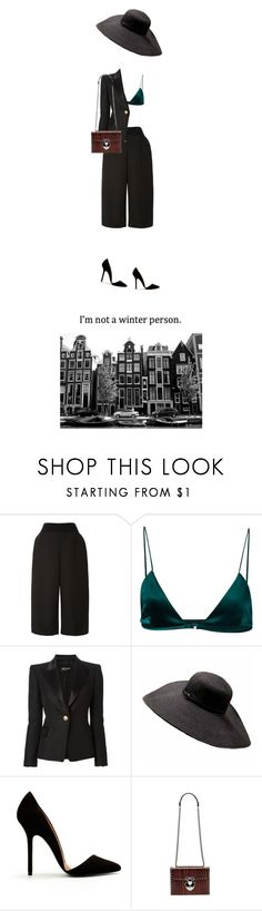 """""""not a winter person"""" by donatelo ❤ liked on Polyvore featuring Monique Lhuillier, Dion Lee, Balmain, Zara and Bertoni"""