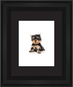 Terrier Puppy Framed Print, Black, Classic, Black, Black, Single piece, 11 x 14 inches
