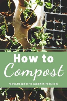 Food Waste How to Compost Raspberries and Kohlrabi How to compost How to reduce your food waste through composting Instructions for saving your food scraps and turning t. Biodegradable Products, Compost Bucket, Home Grown Vegetables, Composting, Food Waste, Green Life, Gardening For Beginners, Sustainable Living