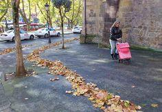 Planeta Bilbao. El camino de hojas amarillas
