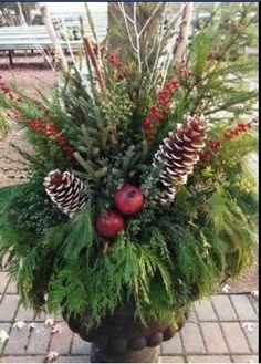 Winter planter by Plantar's Palette