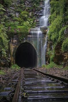 Abandoned Falls