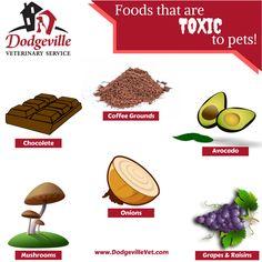 Toxic Foods! www.dodgevillevet.com