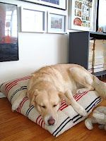 diy doggie bed, could have one for every dog in the house!