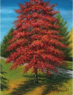Learn how to paint an autumn tree in acrylic with this free demonstration from North Light's Paint Landscapes in Acrylic With Lee Hammond.