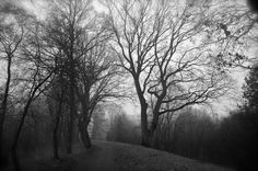 Panoramio - Photos by Michael Kubica