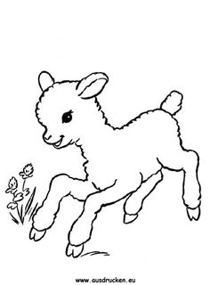 Free Printable Farm Animal Habitat Coloring Pages from Animal Coloring Pages category. Printable coloring sheets for kids you could print and color. Have a look at our collection and print the coloring sheets for free. Farm Animal Coloring Pages, Coloring Pages To Print, Free Coloring, Coloring Sheets, Colouring, Lamm Tattoo, Sheep Drawing, Lamb Drawing, Animal Drawings