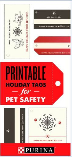 DIY time! Print and customize pet safety tags for presents this holiday! Some human gifts can pose a risk to pets, adding pet-friendly tags alert homeowners to keep them out of reach of curious cats and dogs. Check out more holiday pet safety tips at Purina.