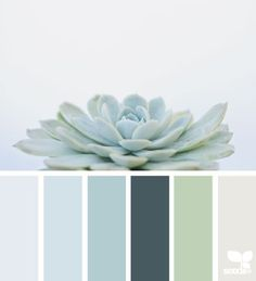 Design Seeds: Color Palettes Inspired by Nature Launched by Jessica Colaluca, Design Seeds is a color and inspiration site that celebrate colors found in nature and the aesthetic of purposeful living. Design Seeds has become her full-time job, a Palette Design, Palette Deco, Nature Color Palette, Colour Palettes, Sage Color Palette, Modern Color Palette, The Palette, Bedroom Color Palettes, Silver Color Palette