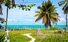 Caye Caulker's old cemetery, an eternal view of paradise, beachfront. Caye Caulker Belize, Wall Art, Photos, Outdoor, Outdoors, Pictures, Outdoor Games, The Great Outdoors, Wall Decor