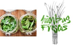 Vegetarian and organic food restaurant VQV