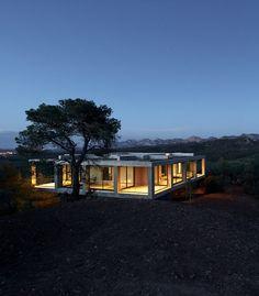 Beton und Natur