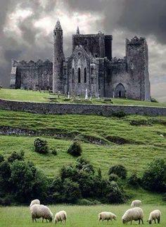 Castle in Ireland https://scontent-a-iad.xx.fbcdn.net/hphotos-ash3/t1/q71/1471881_10151843481208302_414594538_n.jpg