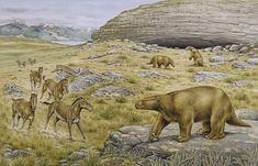Uma cena que pode ter acontecido na Cueva del Milodon, atual Chile: um Mylodon observa uma onça-patagônica Panthera onca mesembrina (uma forma extinta) atacar um grupo de cavalos também extintos (Hippidion). Ilustração: Peter Snowball, NHMPL