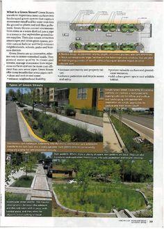 Green Streets in AmericanNurseryman