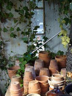 Garden Inspiration - Old, but proper, garden sheds
