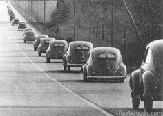 Split window vw beetles caravan