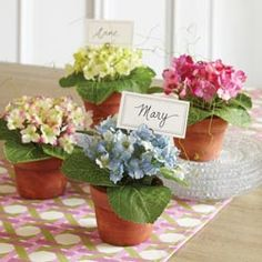 Potted Hydrangea Place Card Holders