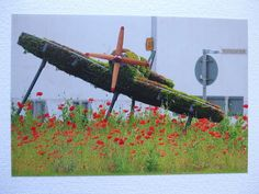 Photographic greetings card  of a Spitfire in topiary, from head on. £2.25
