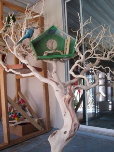 Manzanita Tree stand by Prego Dalliance Sanctuary