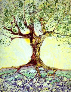 Marbled Tree - Summer  ©d drees