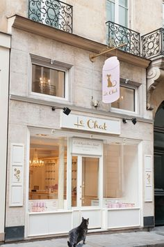 tabs-le-chat-boutique