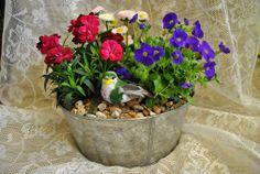 Veckans pris på Facebook Vi har tävlingar på Facebook varje vecka Världens Blommor Annorlunda blomsterhandel i Landskrona 0418651159 VI FINNS PÅ: PINTEREST FACEBOOK TWITTER INSTAGRAM GOOGLE PLUS GOOGLE MAPS YOUTUBE WWW.VARLDENSBLOMMOR.SE