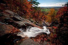 L'automne commence aujourd'hui. Si on surfe encore sur les derniers relents de l'été, bientôt les feuilles des arbres passeront du vert au jaune, puis à l'orange puis au rouge. C'est un spectacle magnifique qui se déroule à plusieurs endroits en même temps sur une longue période, ce qui fait que vous aurez amplement l'occasion d'aller …