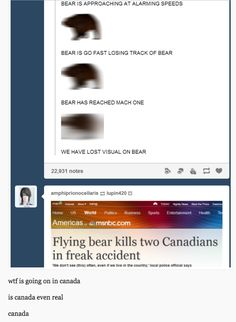 Flying Bears | 21 Pictures That Prove That Canada Is Not A Real Country,if its not a real country where was i for 2 months when i went there