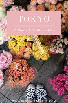 Tokyo Travel Guide - Explore like a local _ IN BETWEEN LATTES | Tokyo Travel Guide Off the Beaten Path - IN BETWEEN LATTES | Tokyo Travel Guide, Off the Beaten Path Tokyo, Tokyo Instagrammable Spots, Must See Places in Tokyo, Explore Tokyo like a local, Things to do in Tokyo, Travelling to Japan, What to pack to Tokyo, What to wear in Tokyo, Best Restaurants in Tokyo, Shopping in Tokyo